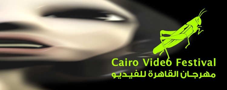 Disconnector screens at the 8th Cairo Video Festival (Feb 5 - 28, 2017)