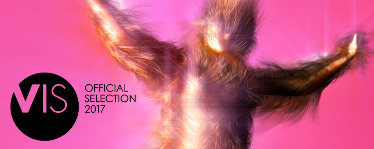 • Sway has been selected for the international Animation Avantgarde competition at VIS Vienna Shorts 2017 (June 1 - 6, 2017, Vienna, Austria)